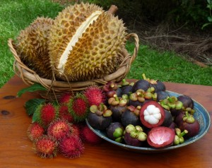 amazing benefits of mangosteen for health and beauty1