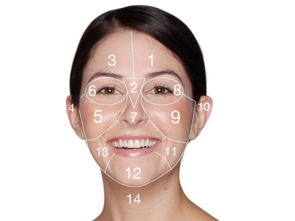 Learn Face Mapping to Solve Various Skin and Health Issues